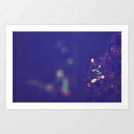 tiny hope Art Print
