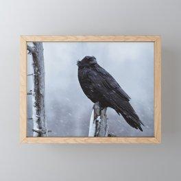 Haunting Raven Framed Mini Art Print