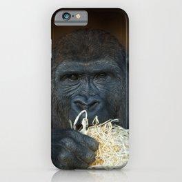 Gorilla Stare iPhone Case