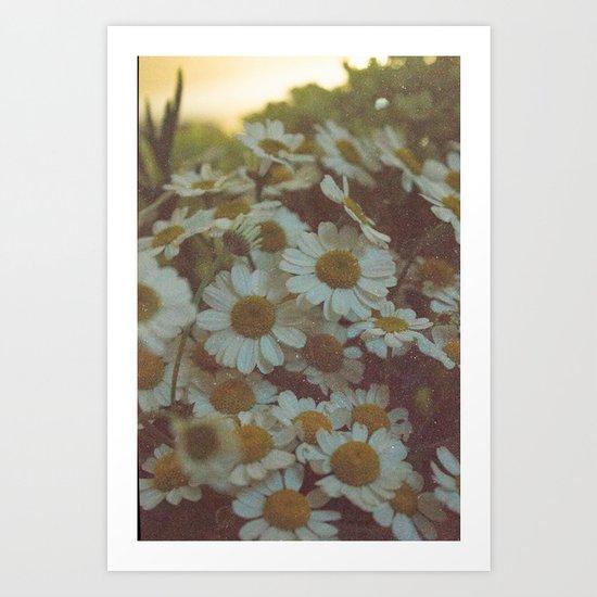 oh daisy  Art Print