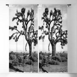 Joshua Tree, Mojave Desert 1904 Blackout Curtain