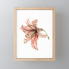 Pink Lily Flower Watercolor Framed Mini Art Print