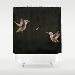 Hummingbirds and bee Shower Curtain