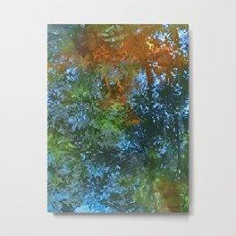 Brooker Creek Reflections Metal Print
