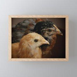 Two Chicks Framed Mini Art Print