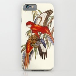 Fiery Parakeet (Platycercus ignitus) illustrated by Elizabeth Gould (1804-1841) for John Goulds (180 iPhone Case