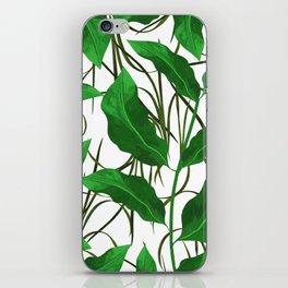 vert iPhone Skin