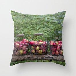 Autumn Apples Rustic Organic Food Still Life Throw Pillow