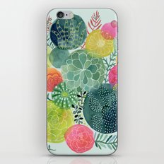 Succulent Circles iPhone & iPod Skin