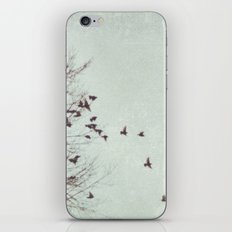 Losing Interest iPhone & iPod Skin