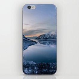 Polar Night iPhone Skin