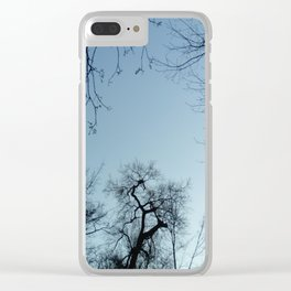 Nature, landscape and twilight 3 Clear iPhone Case