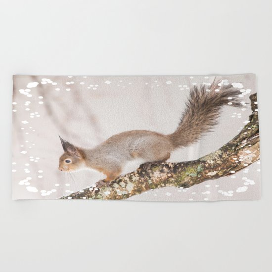Little squirrel jumping on the branch Beach Towel