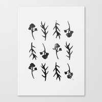 plants Canvas Prints featuring plants by Ingrid Winkler