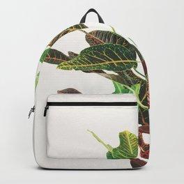 Croton Backpack