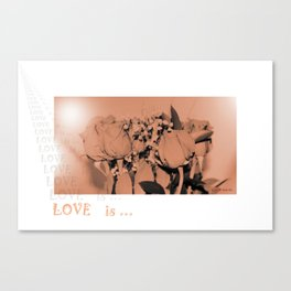 Romantic. LOVE is... Collection Canvas Print