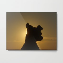 Sun set behind the Chihuahua Metal Print