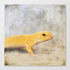 Portrait of a Leopard Gecko Canvas Print