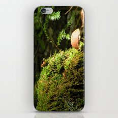 Mushroom chimney iPhone & iPod Skin