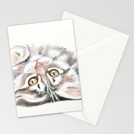 Cute Maine Coon Kitten Playing Stationery Cards