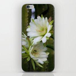 Cereus Morning  iPhone Skin