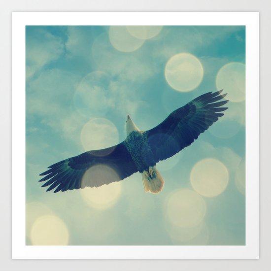 Bald Eagle Overhead Art Print