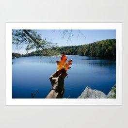 Sign of Fall Art Print