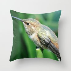Chirp, Chirp Throw Pillow