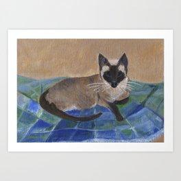 Siamese Napping Art Print