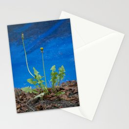 Urban Dandelion Stationery Cards