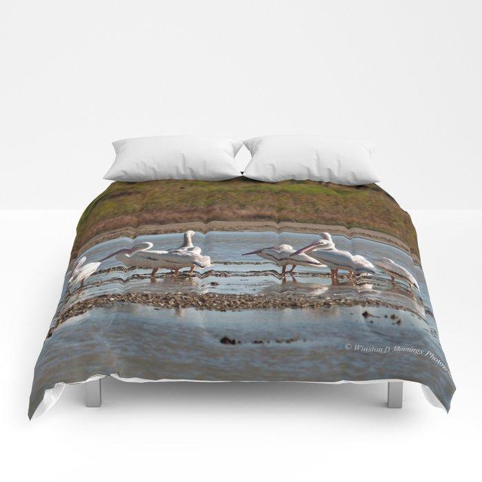 The Birds of Cutler Bay Wetlands Comforters