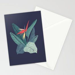 Bird Of Paradise Flower | Strelitzia Illustration Stationery Cards
