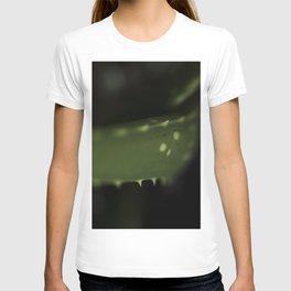Aloe leaf T-shirt