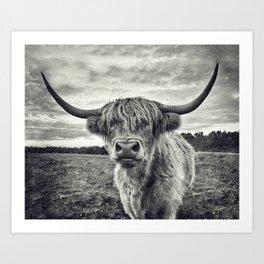 Highland Cow II Art Print