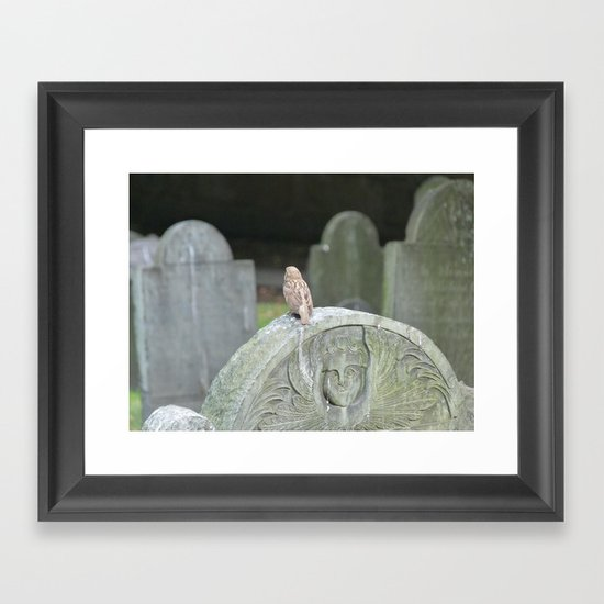 Sparrow in King's Chapel Burying Ground Boston Framed Art Print
