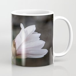 magnolia Coffee Mug
