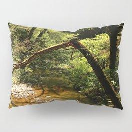 Muir Woods Impression Pillow Sham