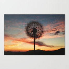 Just Dandy - Landscape Canvas Print