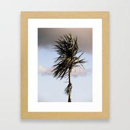 Standing in the Wind Framed Art Print