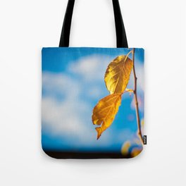 Catchy Autumn Tote Bag