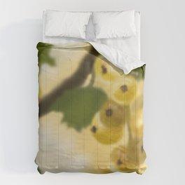 Wild Currants  Comforters