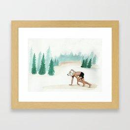 Canis Lupus Signatus(Lobo Iberico, Iberian wolf) Framed Art Print