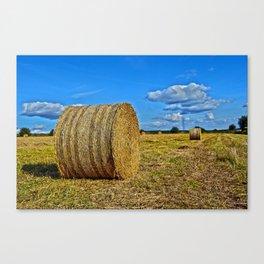 Round straw bales Canvas Print
