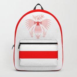 Resistance Backpack