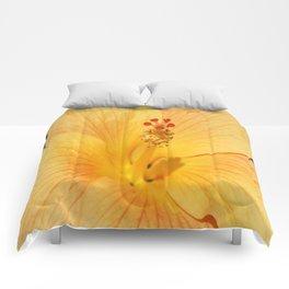 Golden Hibiscus Comforters