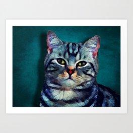 Cat #cat #kitty Art Print