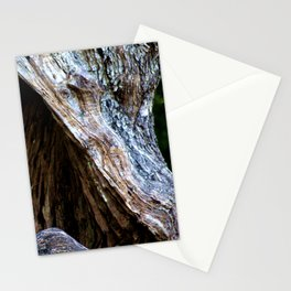 Old Olive Tree wood Stationery Cards