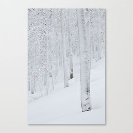 Snow covered forest winter wonderland Canvas Print