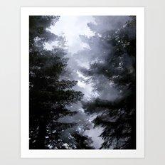 Morning Fog in the Woods Art Print