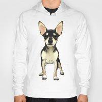 chihuahua Hoodies featuring Chihuahua by jackwatson05